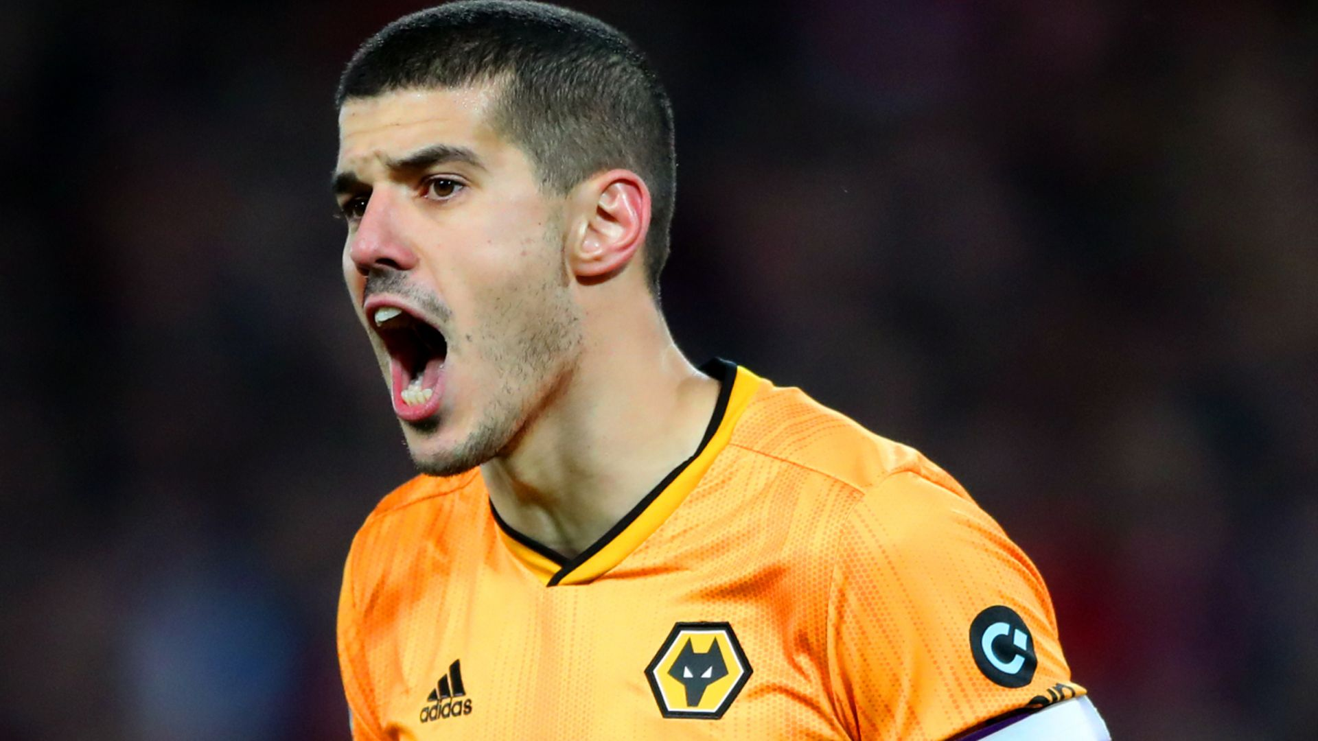 Wilder tried to sign Wolves captain Coady