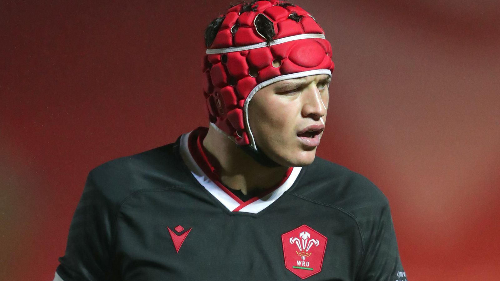 Wales draft James Botham, Willis Halaholo and Lloyd Williams into Six Nations squad as injuries mount