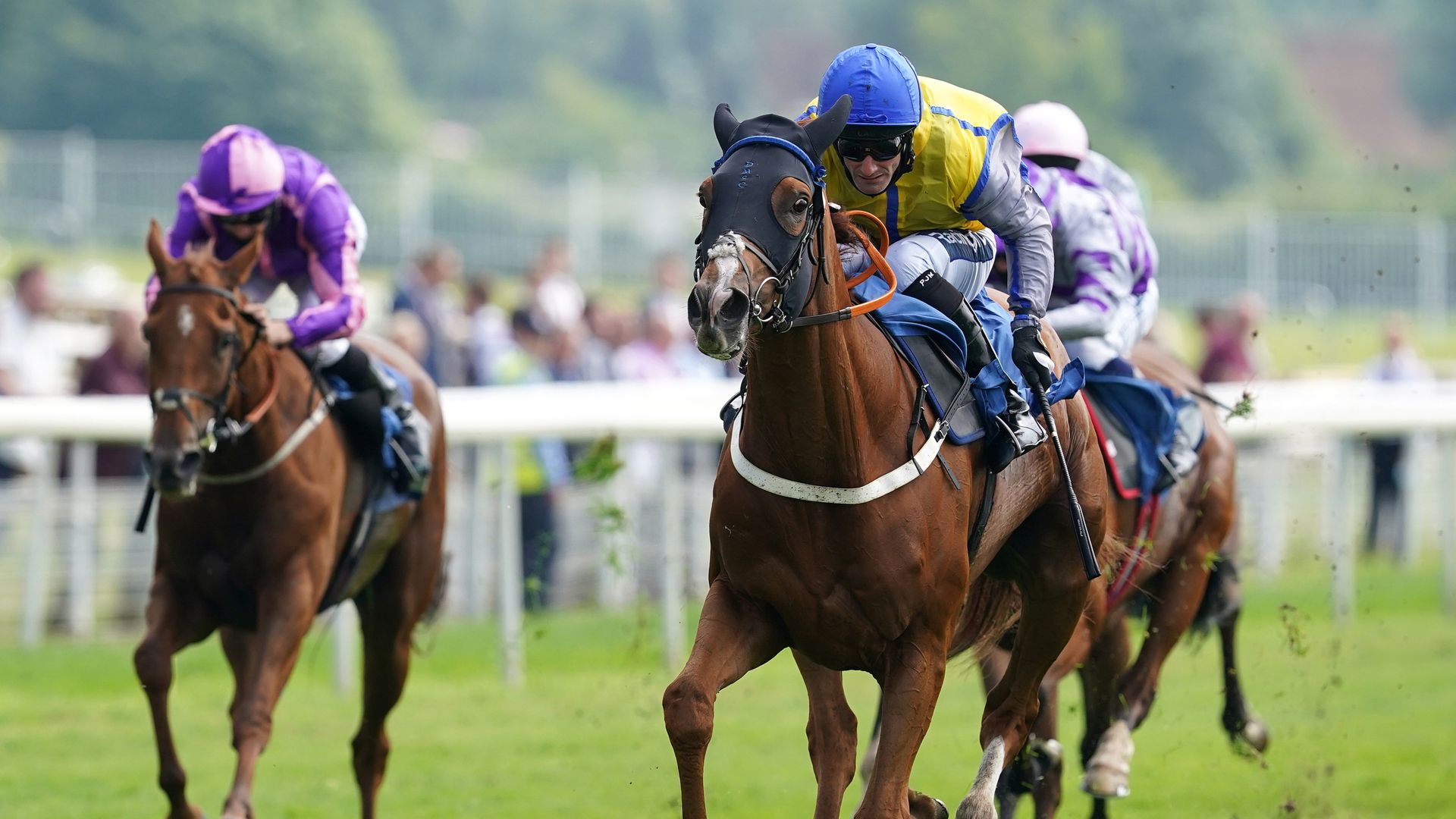 Cesarewitch in the mix for McCain's Goobinator