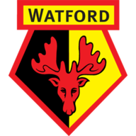 Watford challenge FA's decision to uphold Etienne Capoue red card vs Leicester | Football News |